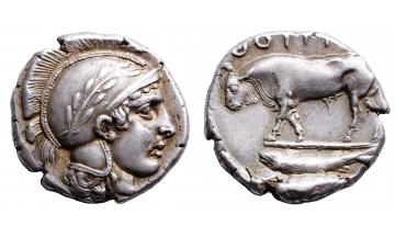 Lucania, Thurium, Stater ca. 443-400 BC