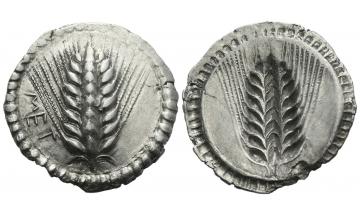 Lucania, Metapontum, Nomos ca. 540-530 BC, Metapontum