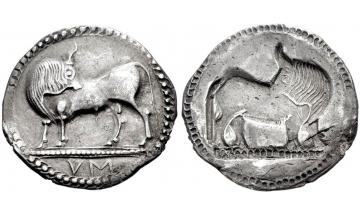 Lucania, Sybaris, Nomos 550-510 BC, rare